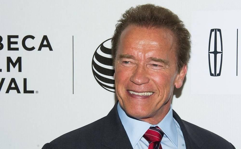 Sudafrica, Schwarzenegger aggredito con un calcio volante alla schiena